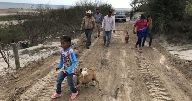 1 En San Fernando inician trabajos de rehabilitación de calles
