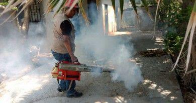 Zika y chikungunya1