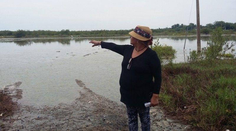 Lluvia provoca encharcamientos en zona